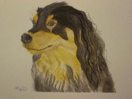 Bobby the Spaniel - Watercolour